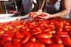Lavaggio pomodori per salsa