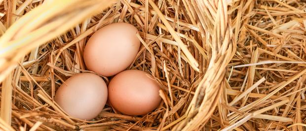 Uova offerta Pasqua agriturismo