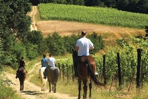 Passeggiata a Cavallo Agriturismo